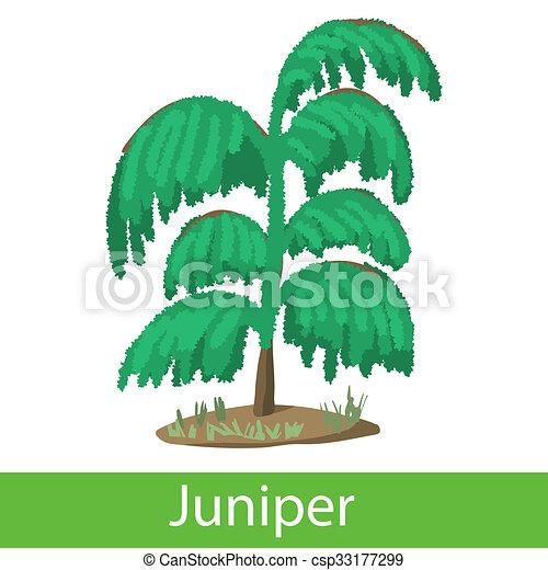 Juniper Cartoon Icon Single Symbol On A White Background Stock