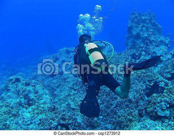 kék, merülés, mély - csp1273912