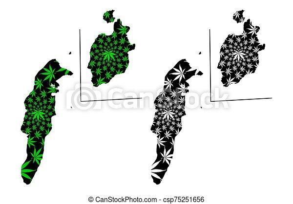 kaart, ontworpen, marihuana, (marihuana, andres, kerstman, groene, andres, gemaakt, cannabis, y, blad, providencia, archipel, catalina, gebladerte, (republic, colombia), black , san - csp75251656