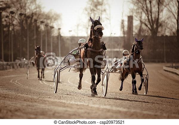 kabelstrang- laufen, .horse - csp20973521