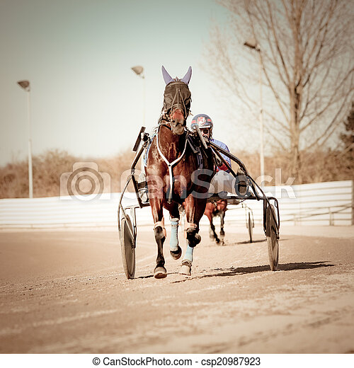 kabelstrang- laufen, .horse - csp20987923