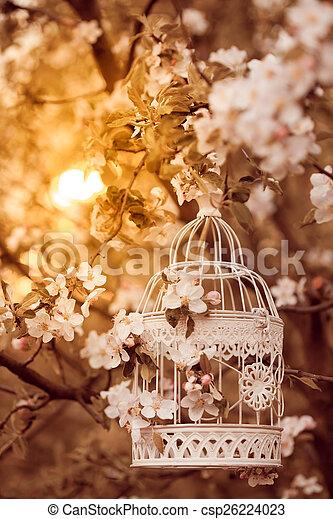 kalitka, lakberendezési tárgyak, -, madár, romantikus - csp26224023