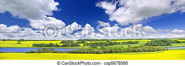 kanada, panorama, preria, saskatchewan - csp5678568