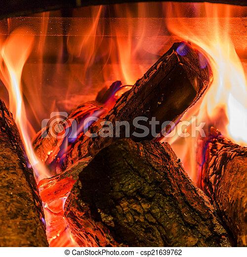 kandalló, firewoods, öreg, égető - csp21639762