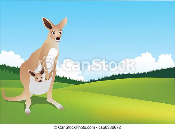 Kangaroo in the wild - csp6336672