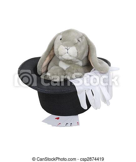 kapelusz, królik - csp2874419