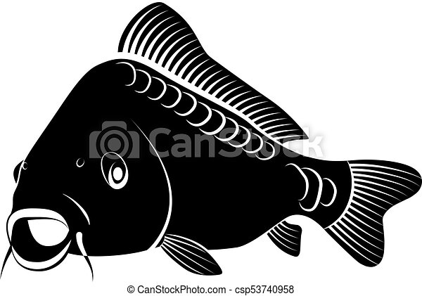 Umeni Skripec Kapr Osamoceny Ilustrace Fish