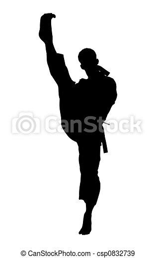 karate, út, darabka, árnykép, megrúg - csp0832739