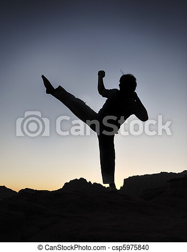 Karate fighter silhouette, young man doing an exercise of fighting sport, sunset, outdoor - csp5975840
