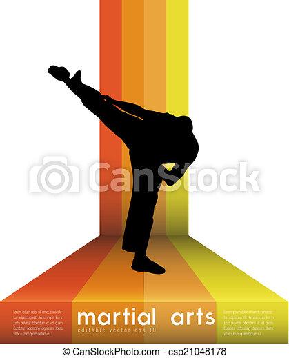 Patada de karate - csp21048178