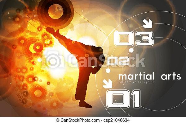 Patada de karate - csp21046634