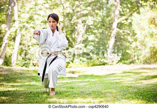 Asiática practicando karate - csp4290640