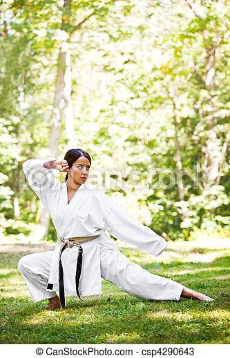 Asiática practicando karate - csp4290643