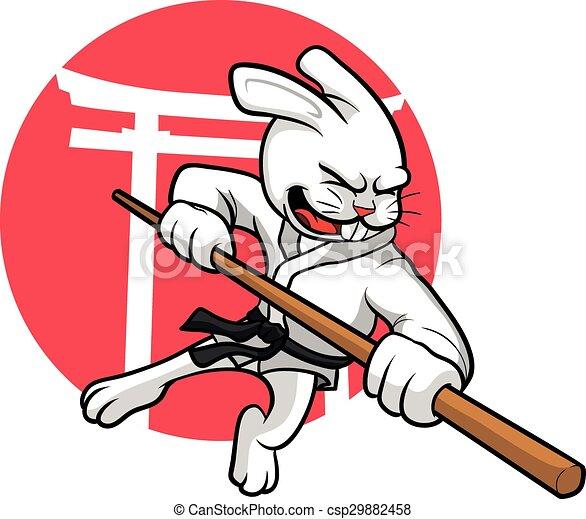 Karate Rabbit - csp29882458
