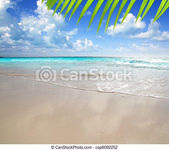 karibisk, reflexion, lätt, morgon, sand, våt, strand - csp6092252