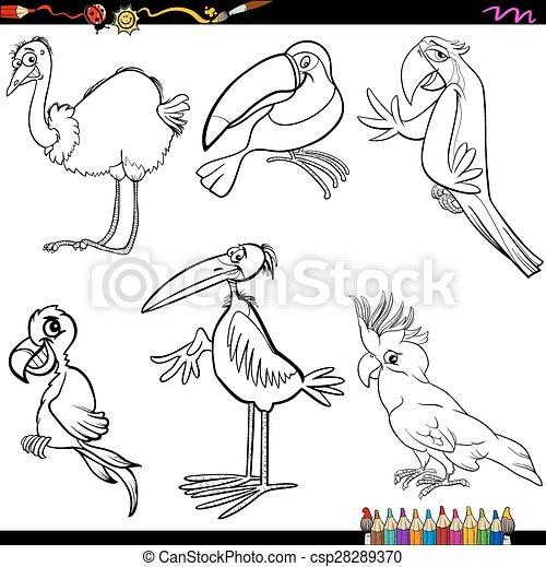Karikatur, färbung, vögel, seite. Lustiges, färbung, satz ...