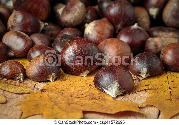 Kastanien Haufen Blätter Ahorn Stockfotos Suche Foto Clipart