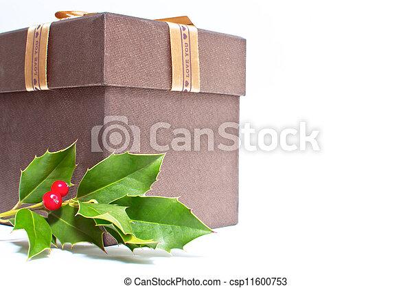 kasten, weihnachtsgeschenk - csp11600753
