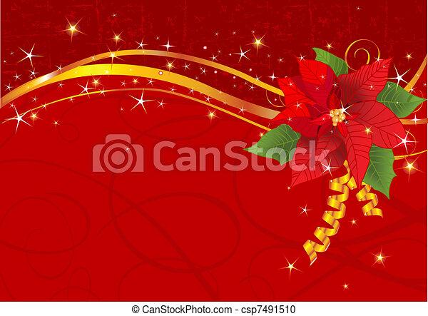 kerstmis, poinsettia, achtergrond - csp7491510