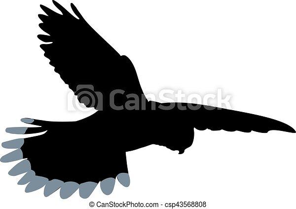 Kestrel silhouette - csp43568808