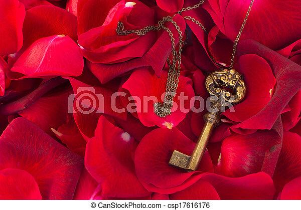 Key with crimson rose petals - csp17616176