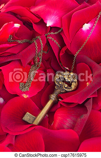 Key with red rose petals - csp17615975