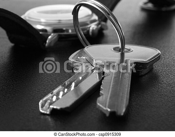 keys 5 - csp0915309