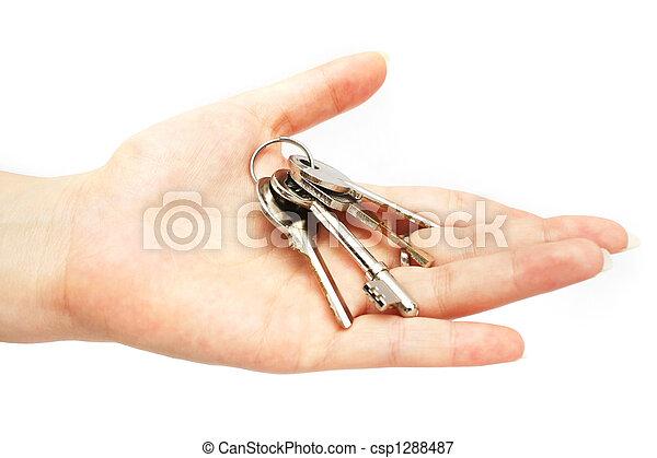 Keys On Hand - csp1288487
