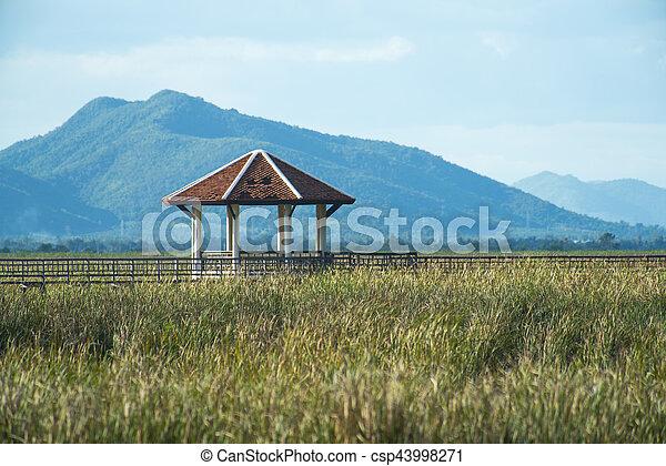 khiri, bridzs, légvédelmi rakéta, roi, fából való, kán, nemzeti, yod, tó, liget, prachuap, thaiföld - csp43998271