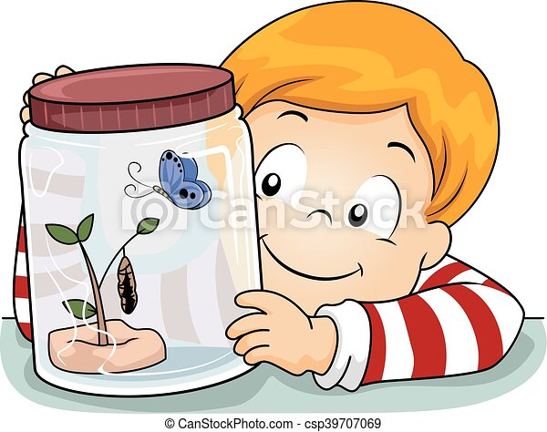 kid boy science butterfly life cycle illustration of a clip art rh canstockphoto com  life science clipart