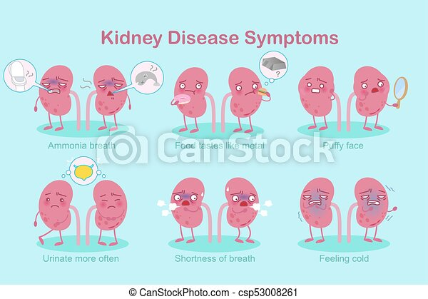 kidney with healthy problem - csp53008261