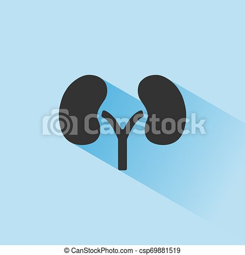 Kidneys icon with shade on blue background - csp69881519