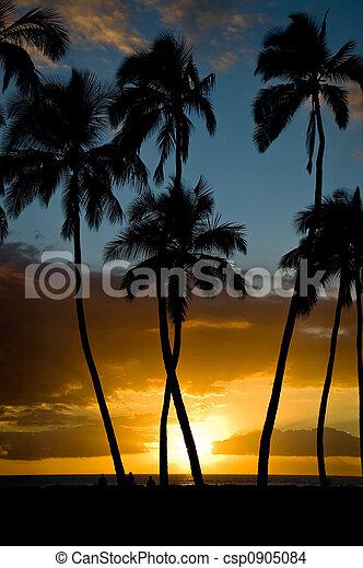 Kihei Sunset - csp0905084