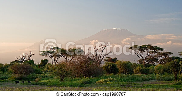 Kilimanjaro at Sunrise - csp1990707