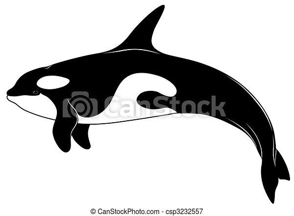 Killer whale, tattoo - csp3232557
