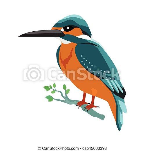 Kingfisher Flat Design Vector Illustration - csp45003393