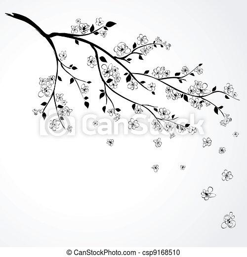 Blumenzweig japanischer Kirsche - csp9168510