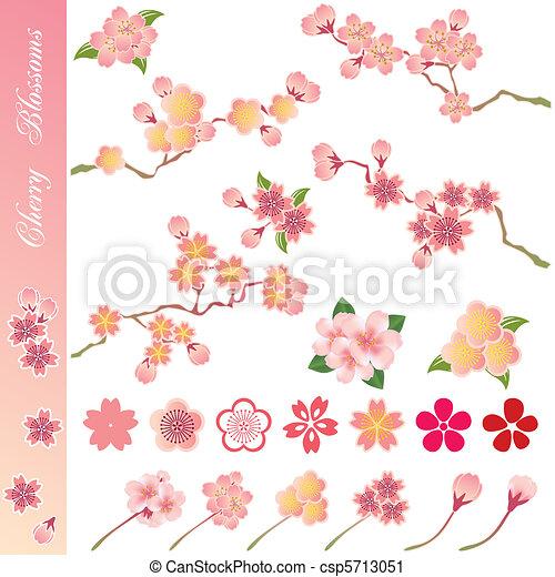 kirschen, satz, blüten, heiligenbilder - csp5713051
