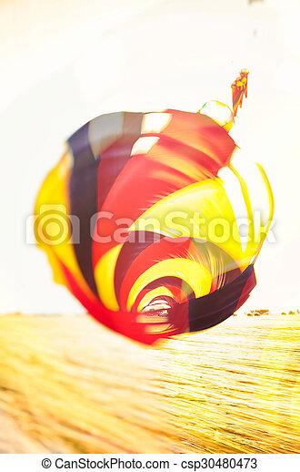 Kite on the beach of Sankt Peter-Ording II - csp30480473