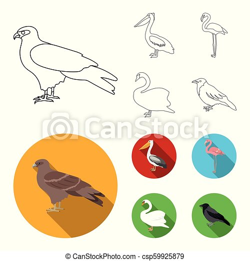 kite pelican flamingo swan birds set collection icons in outline