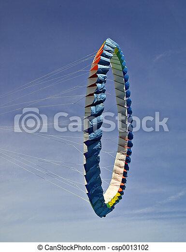 Kites 1 - csp0013102