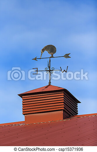 Kiwi bird weather vane - csp15371936