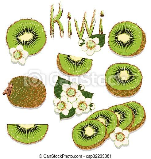 Kiwi - csp32233381