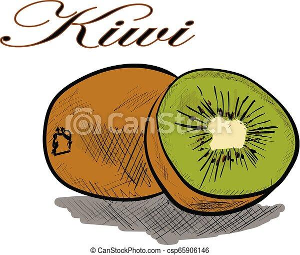 kiwi - csp65906146