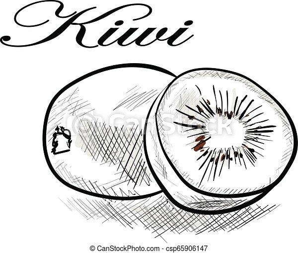 kiwi - csp65906147