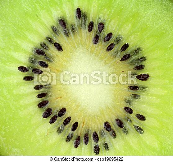Kiwi fruit slice - csp19695422