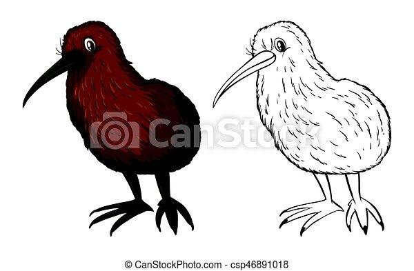 Kiwi Garabato Pajaro Animal Kiwi Garabato Animal Ilustracion