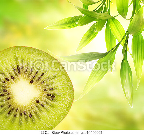 kiwi, op, groene samenvatting, achtergrond - csp10404021