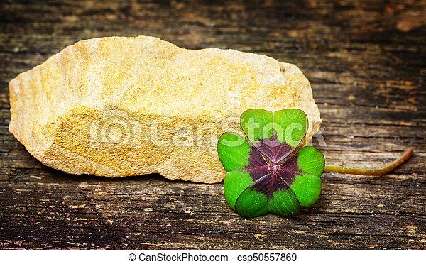 kleeblat, stein, holz, glücklich - csp50557869