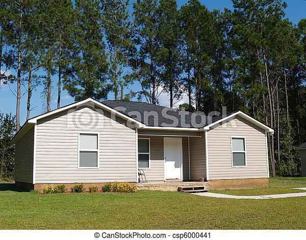 klein, daheim, niedrig, einkommen - csp6000441